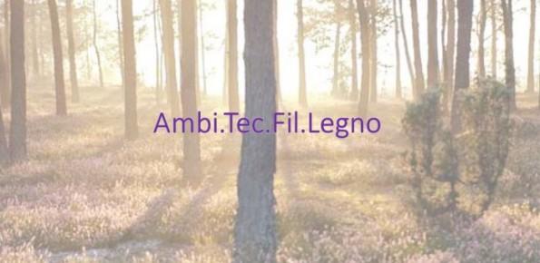 AmbiTecFilLegno-Foto bosco-24.11.2014-