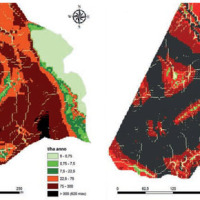 project-mitigazione-processi-desertificazione-calabria-evidenza-